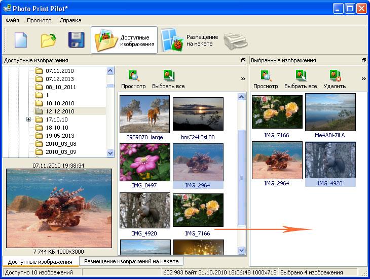 программа для обработки и печати фотографий скачать бесплатно - фото 2