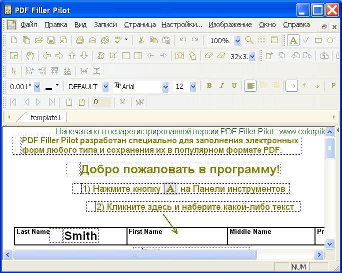 PDF Filler Pilot